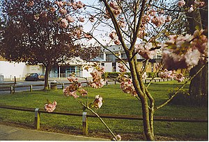 Cranleigh - Cranleigh Leisure Centre