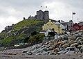 Criccieth Castle - geograph.org.uk - 1190200.jpg