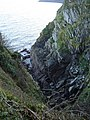 Cruggleton Cliffs - geograph.org.uk - 604970.jpg