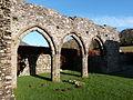 Cymer Abbey (8370109120).jpg