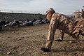 Czech soldiers train Afghan military police DVIDS233410.jpg