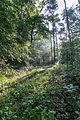 Dülmen, Naturschutzgebiet -Am Enteborn- -- 2014 -- 0210.jpg