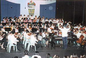 De La Salle Santiago Zobel School - The DLSZ Symphony Orchestra during Zobel's 25th Anniversary concert