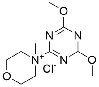 N-Hydroxysuccinimide - WikiVividly