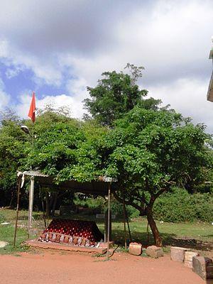 Shivanasamudra Falls - Dargah at Sathyagala on Shivasamudram Road