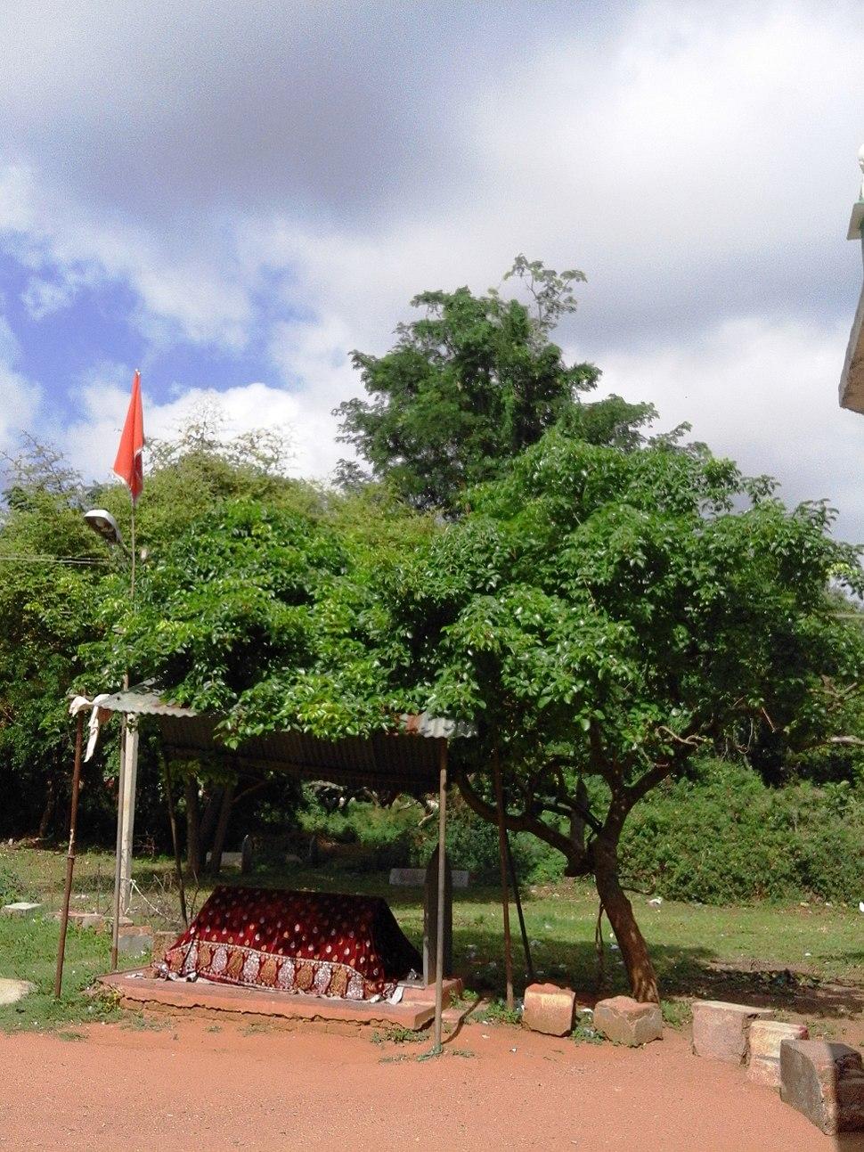 Dargah at Sathyagala