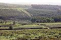 Dartmoor-34-2004-gje.jpg