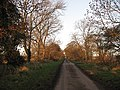 Dawn, Nisbet - geograph.org.uk - 1060409.jpg