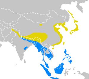 Yellow – breeding range Blue – wintering range