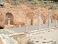 Delphi 049.jpg