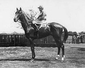 The Metropolitan (ATC) - Denis Boy, 1932 winner