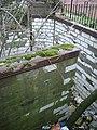 Derelict urinal, Emscote Road - geograph.org.uk - 1201939.jpg