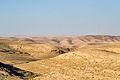 Desert-Karak.jpg