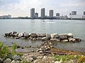 Detroit view from Windsor - panoramio.jpg