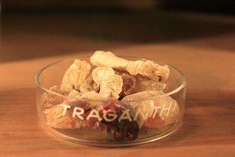 Tragacanth - A dish of Tragacanth