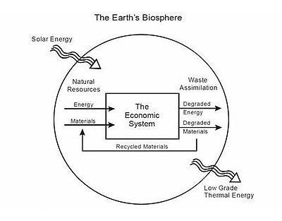 Economie Ecologique Wikipedia