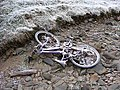 Does anyone want a bike^ - geograph.org.uk - 638251.jpg