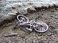 Does anyone want a bike^ - geograph.org.uk - 638251.jpg