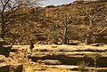 Dogonowie- Wielka Równina, tzw. Saza - Mali - 001223s.jpg