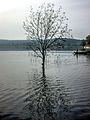 Dojran Lake 189.jpg