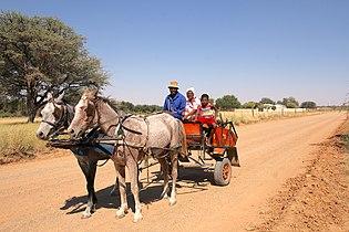 Donkey-drawn cart in Gobabis, Namibia.jpg