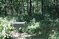 Dora Newmans headstone (2818357355).jpg