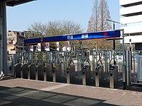 Dordrecht OVC poorten.jpg