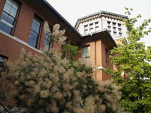 Doshisha Women's College of Liberal Arts - Eikoukan, Imadegawa campus