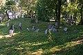 Dotnuva Jewish cemetery -Dotnuvos žydų kapinės - panoramio.jpg