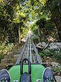 Dragon's Tail Alpine Coaster (31864264142).jpg