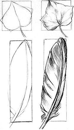 Easy Beginner Drawings Very Easy Pencil Drawings For