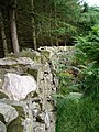 Dry stone wall - geograph.org.uk - 198607.jpg