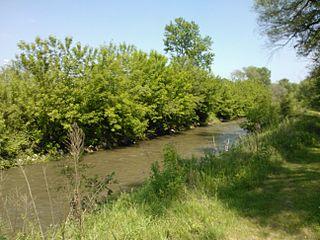 Duck Creek (Quad Cities)