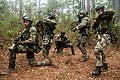 Dutch Marines participate MOUT training on Camp Lejeune 15.jpg