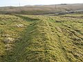 Earth dyke on Parkhead Hill - geograph.org.uk - 662454.jpg