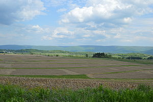 Chestnut Ridge (Laurel Highlands) - Fields south of Uniontown, with the western side of Chestnut Ridge in the background
