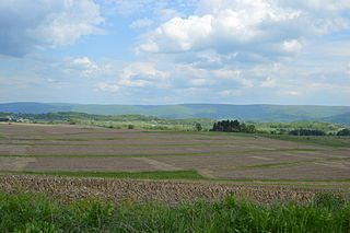 Georges Township, Fayette County, Pennsylvania Township in Pennsylvania, United States