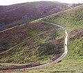 Eastern Path around British Camp - geograph.org.uk - 650370.jpg