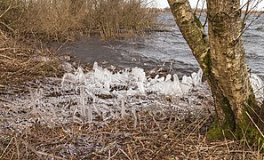 Een ijzige wind waait over de Put van Nederhorst 24.jpg