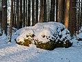 Eichig Felsenlabyrinth Winter-20210110-RM-150849.jpg