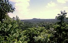 A view across dense jungle with trees framing the left and right sides. The forest extends to the horizon, where a jungle-covered hill breaks the plain. Broken clouds are scattered across a pale sky.