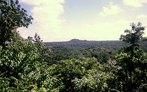 El Tintal - View from the triadic pyramid at El Tintal, looking towards the pyramids of a neighbouring site.