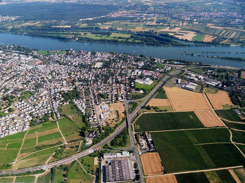 File:EltvilleKiedricherStrB42RheinKönigsklingerAueN.JPG