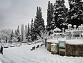 Emirsultan Mah.Bursa 2015 Kar manzaraları - panoramio.jpg