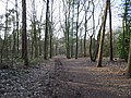 Emmerich am Rhein Speelberg Im Duvendahl PM19-02.jpg