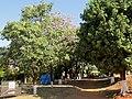 Entrada do Engenho Santo Mário em Catanduva. O local é ponto turístico da região, com a venda de bebidas artesanais e garapa. A visita no antiquário nos remete aos tempos antigos. - panoramio (2).jpg