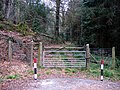 Entrance to forest - geograph.org.uk - 1804335.jpg