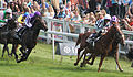 Epsom Derby 2012- Camelot and Main Sequence.jpg