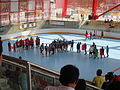 Equipos de Hockey en Linea de Candá y Estados Unidos.JPG