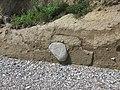 Erosion am Steilufer Schönhagen.jpg